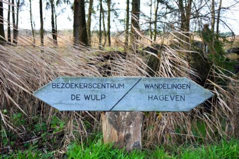 Grenzeloos door het Brabantse 'Plateaux en Hageven'