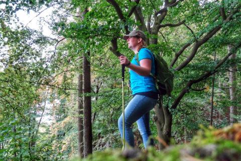 Ontdekking: wandelen door de 'Gerolsteiner Dolomieten' in de Eifel