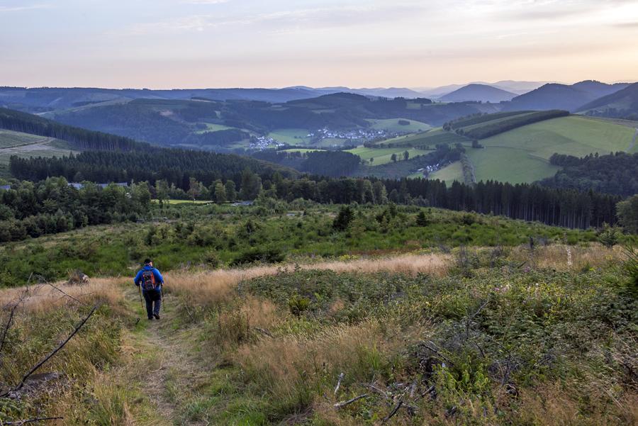 8.-Die-bergige-Landschaft-am-Rothaarsteig-f