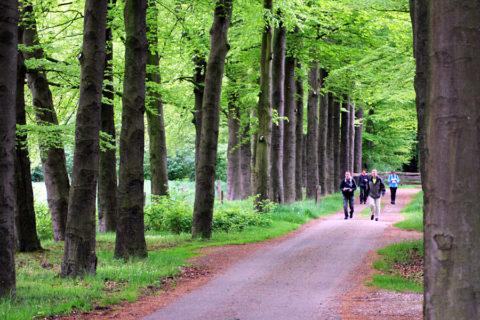 5 mei: 'Heurnetocht' door het glooiende landschap van De Lutte