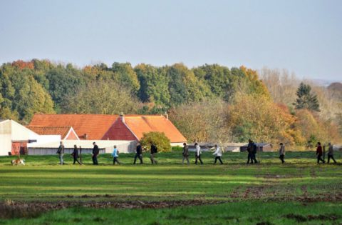 Paasweekend: Wandel 3-daagse door het rustige Vlaamse platteland