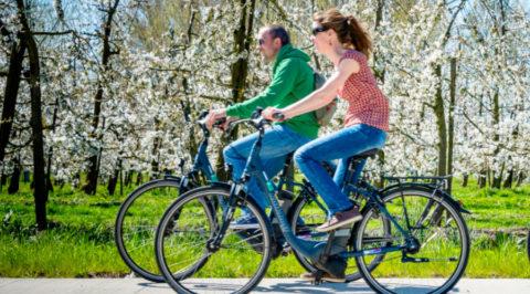 De Fruitlandroute: dé Bloesem-fietsroute van Vlaams Brabant
