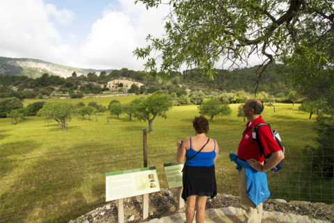 6 t/m 9 april: Mallorca Walking Event 2017