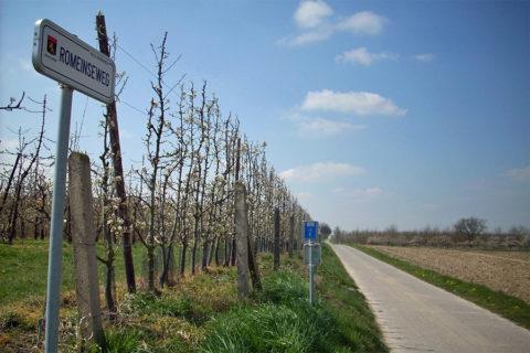 Dé Bloesem-fietsroute van Vlaams Brabant