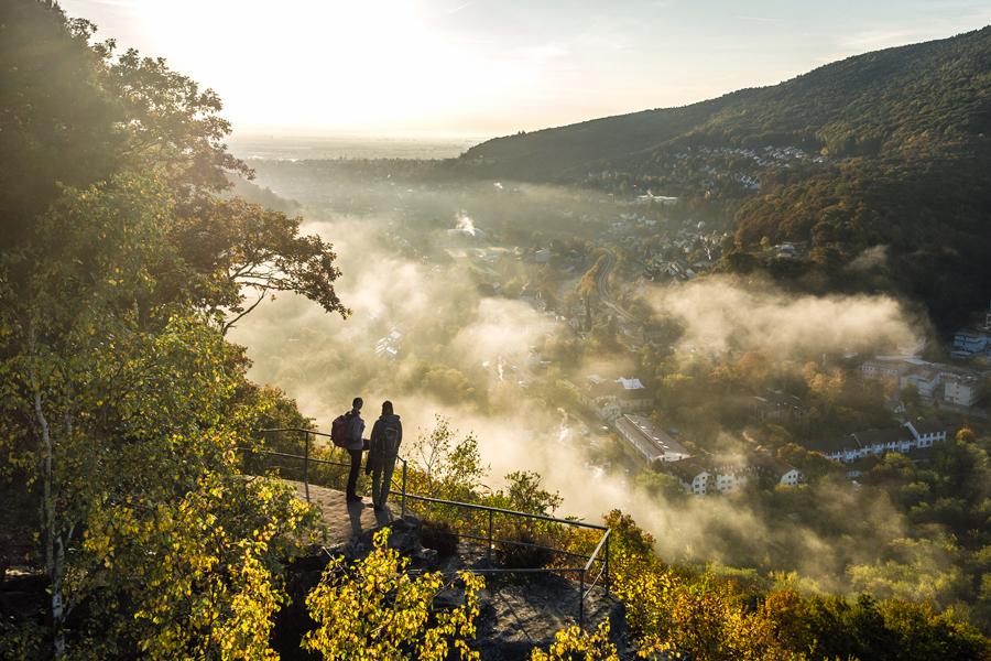 Pfalz-Touristik-2016-001-Weinsteig,-Wolfsburgruine-Neustadt