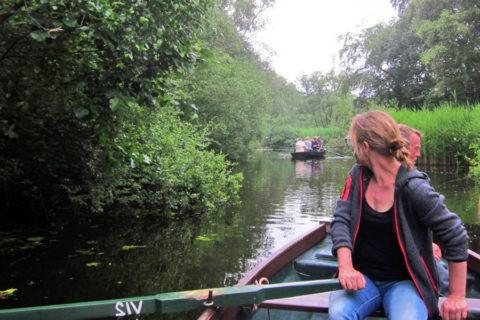 Van half juni tot begin juli: Roeiboot excursies door uniek veengebied