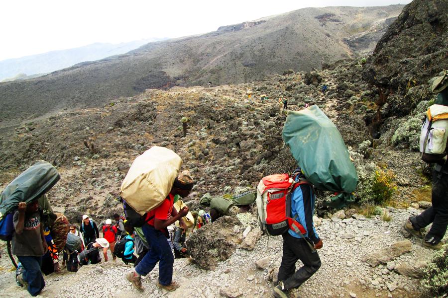 kilimanjaro-id5