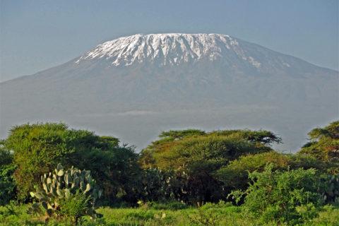 Op wandelexpeditie naar de top van de Kilimanjaro