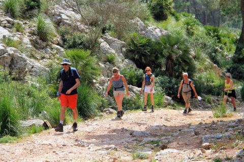 Nederlanders ontdekken Voorjaars Vierdaagse op Mallorca