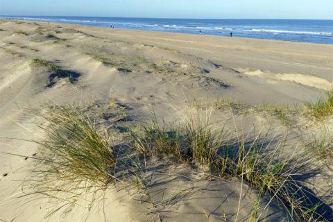 Kies je in augustus voor een strand-3-daagse of 4-daagse?