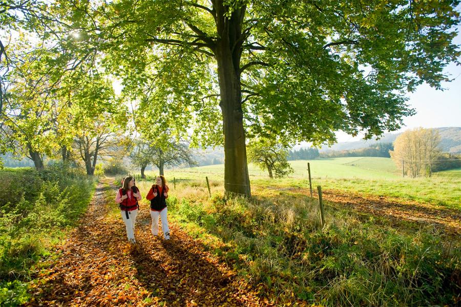 Westerwald4,-Dominik-Ketz-Rheinland-Pfalz-Tourismus