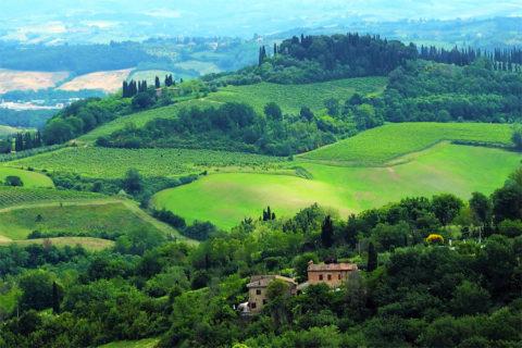 Busreis Fietsvakantie door het landschap van Toscane