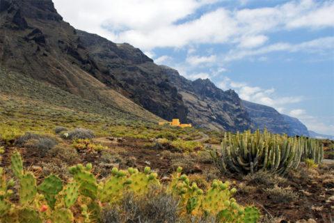 Wandelvakantie door de vulkaanlandschappen van Tenerife