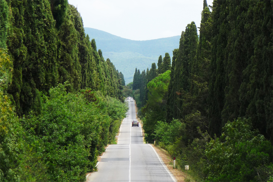 Toscaanse-kust,-Viale dei Cipressi-Bolgheri,-Lucarelli,-Wikimedia