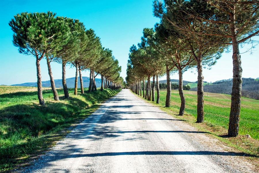 Weg-door-de-po-vlakte,-CC0-Public-Domain,-Pixabay