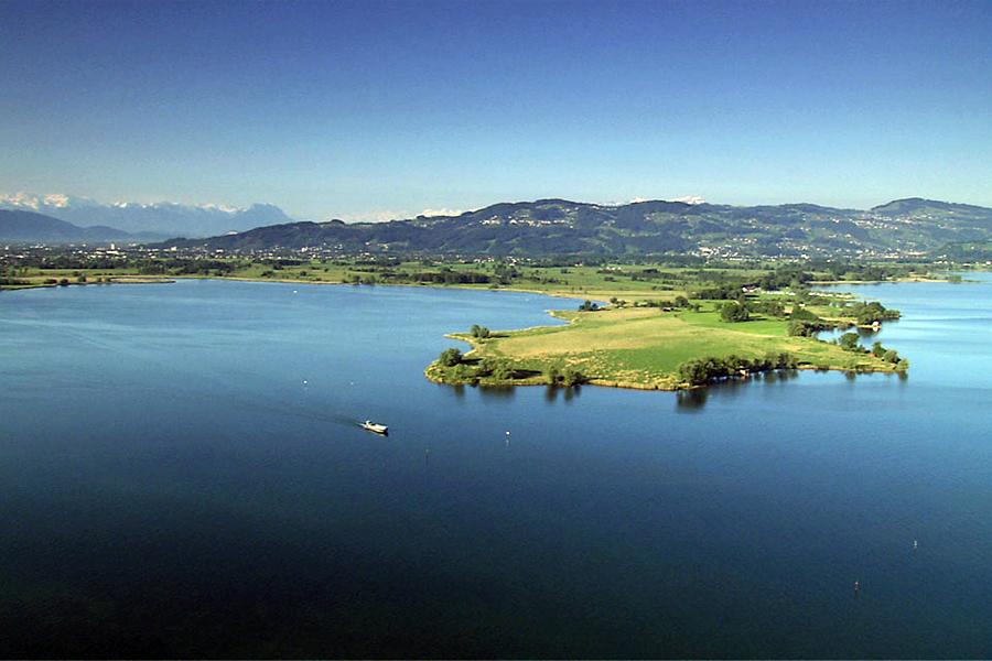 ZWARTE-WOUD,-Bodensee,-Cinedoku-Vorarlberg,-Wikimedia