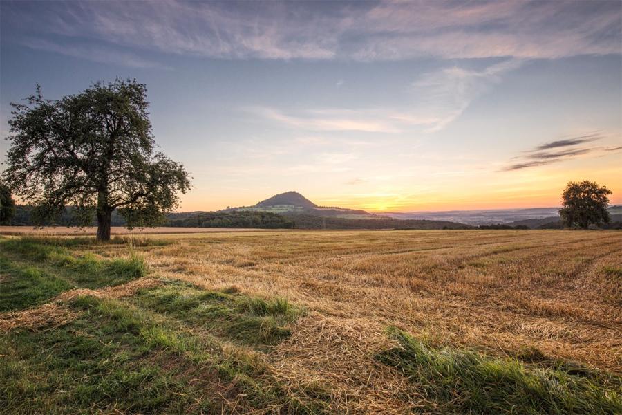ZWARTE-WOUD,-Hohenhewen-Vulkaan,-CC-Domain-Publik,-Pxhere