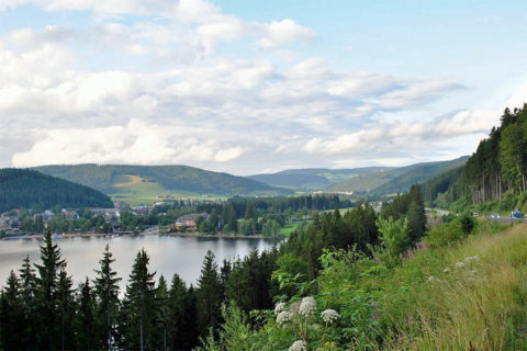 Wandelvakantie door het Zwarte Woud naar de Bodensee