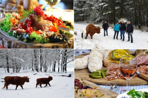 8 & 9 febr: Bourgondisch Winters Wandelweekend Veluwezoom