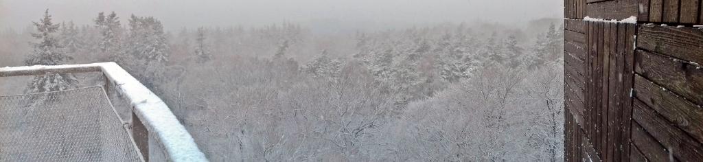 Winter (2) (1024x236)