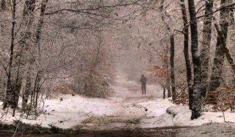 Heerlijk, zo'n witte Hollandse winterwandeling
