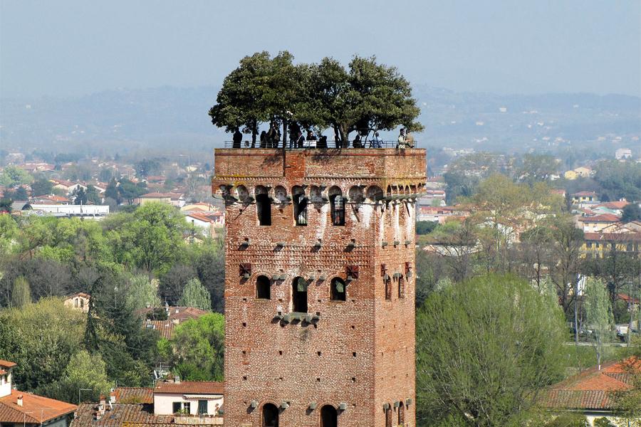 TOREN-LUCCA,-LivornoDP,-Wikimedia