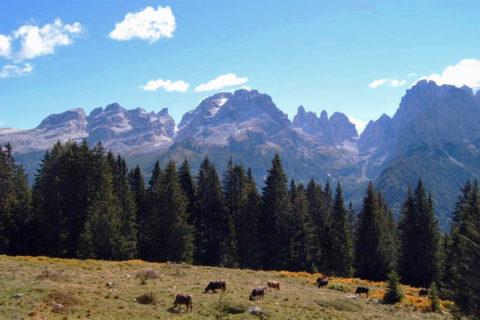 Huttentocht Dolomieten, Val di Sole en Val di Peio