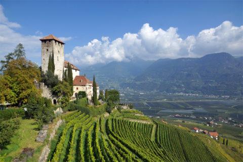 Wandelvakantie Zuid-Tirol, boomgaarden, burchten en bergtoppen