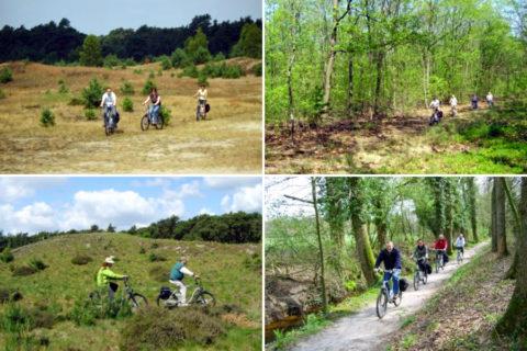 Op e-bike-safari over de ongerepte plekken van de Veluwe