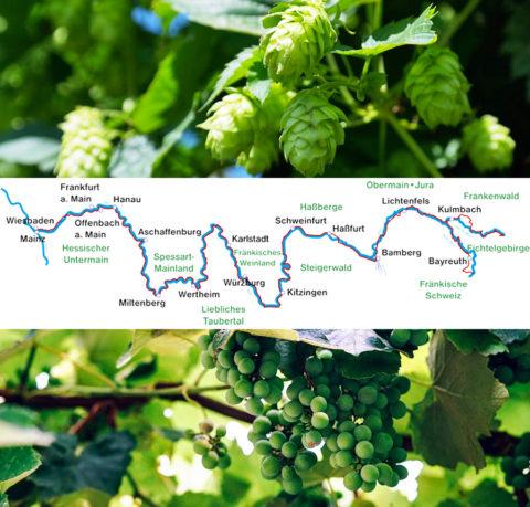 Fietsen langs barokke highlights tussen hopvelden en wijnbergen