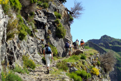 Het ideale wandelklimaat vind je op Madeira, eiland van de eeuwige lente