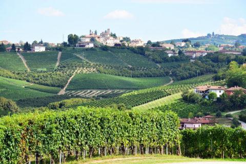 Wandelvakantie door een van de beste wijnstreken van Italië