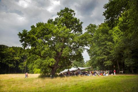 20 t/m 22 juli: Klassiek muziekfestival 'Wonderfeel' 's Graveland