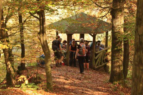 Herfst in de Hunsrück, 10 redenen om met onze groepsreis mee te gaan