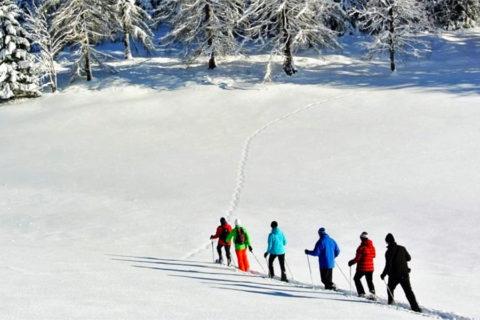 Sneeuwschoen Groepswandel Vakantie Dolomieten
