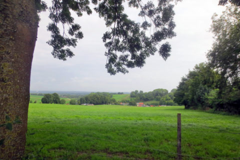29 sept: Nazomer-Panorama-wandeling rondom Voerendaal