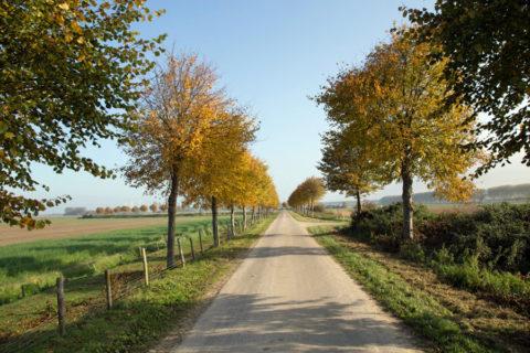 13 okt: Herfstwandeltocht Zeeuws Vlaanderen