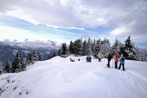 Sneeuwschoen Groepswandel Vakantie Steiermark