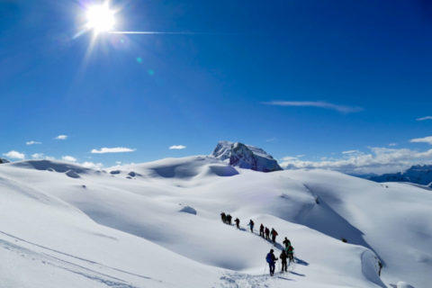 Sneeuwschoen Groepswandel Vakantie Tirol