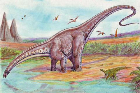 Een wandelroute in de voetsporen van Dinosaurussen en Romeinen