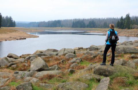 Puur natuur langs een eeuwenoud stuwmeer in de Harz