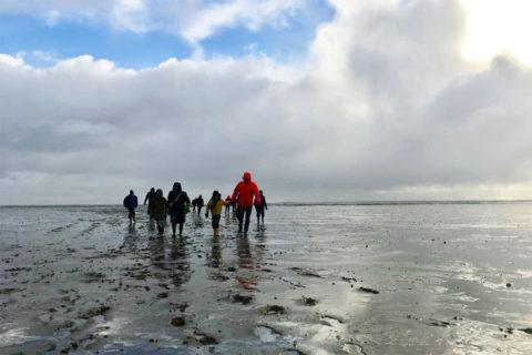 2 jan: Wadloop-excursie Schiermonnikoog