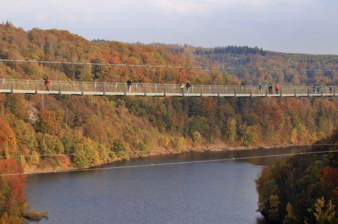 Herfst in de Harz, indrukwekkend vanaf de langste hangbrug 'Titan-RT'
