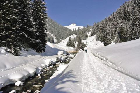 Winterwandelen in het Lechtal deze voorjaarsvakantie?