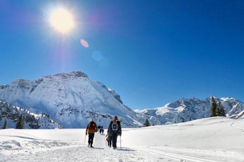 Sneeuwschoen Groepswandel vakantie in het Lechtal