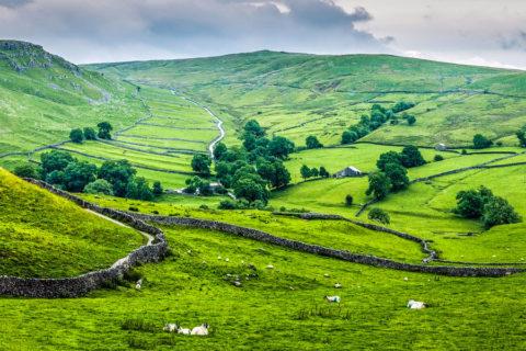Fietsen over de ommuurde landwegen van Yorkshire Dales National Park