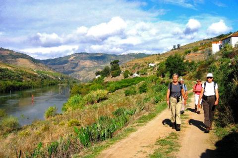 Wandelvakantie Portugal door de Douro vallei met Porto