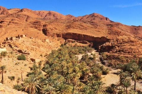 Wandelen of fietsen in een verborgen Marokkaanse oase