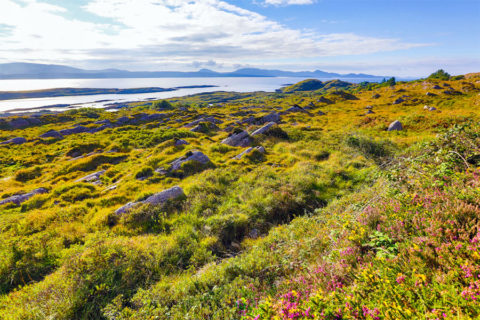 Wandelvakantie Ierland over de Ring of Kerry