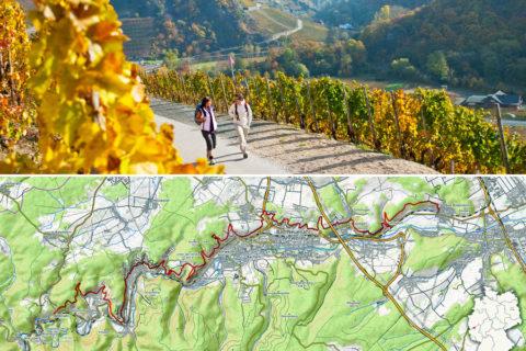 Dwars door Duitslands beroemdste Rodewijngaarden in het zonnige Ahrdal